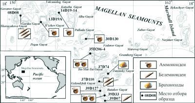 Рис. 7. Распределение позднемеловых цефалопод и брахиопод в районе Магеллановых гор, Тихий океан