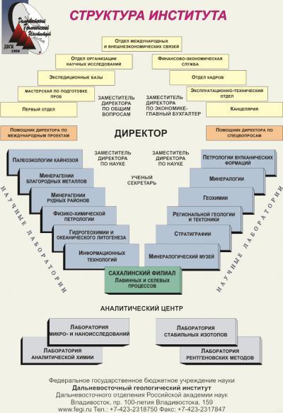 Структура Дальневосточного геологического института